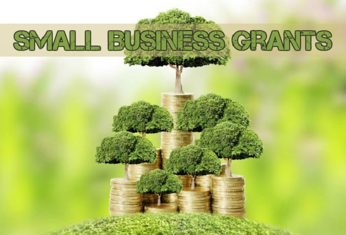 money small business grants caption