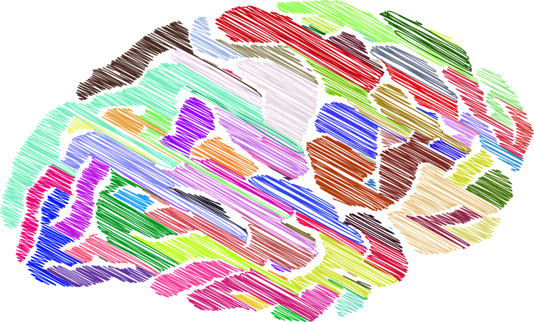 Brain colored in rainbow shades