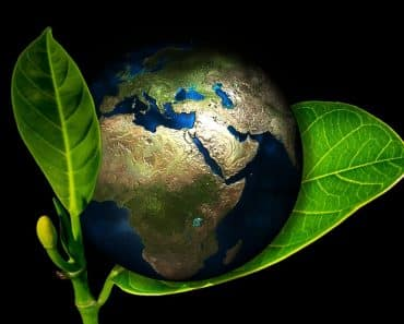 Starting an eco-friendly business is a great idea